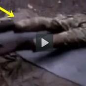 Soldado tem pernas puxadas por forças sobrenaturais em uma floresta na Colômbia