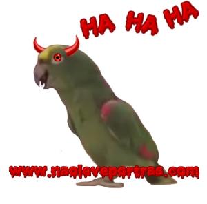 papagaio maligno