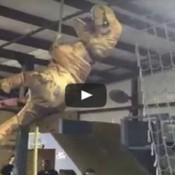 Treinamento militar para dinossauros
