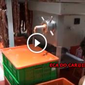 Veja como funciona o supermercado CarreFour na China !