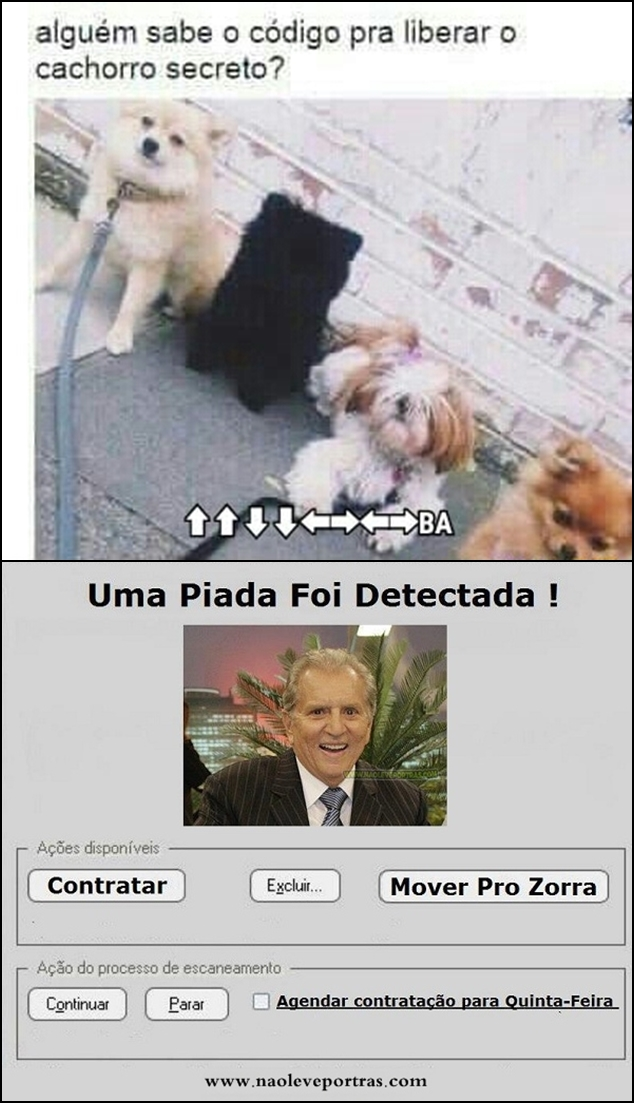 cachorro secreto