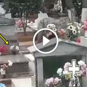 Espirito do coisa ruim baixa no vaso do cemitério, e quase mata todo mundo!