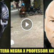 Pantera negra vs Professor Xavier
