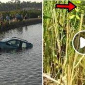 Playboy joga S-10 na lagoa e é castigado pelo pai