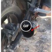 Esta definitivamente proibido rir do rato que resolveu dormir no escapamento da moto