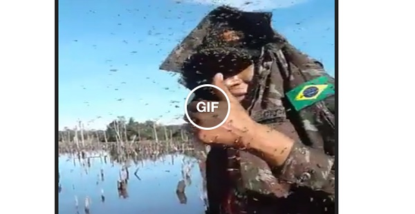 Lugarzinho firmeza pra pescar