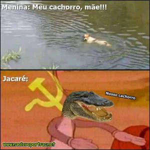 Jacaré folgado